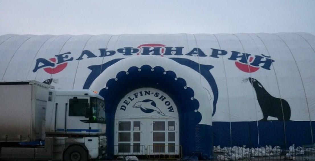 В Тюменском дельфинарии обрушилась лестница с людьми