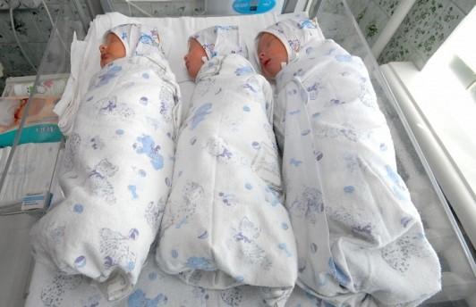 В Севастополе почти 1500 матерей лишились пособий по уходу за детьми